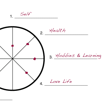 Wheel of Life exercise example